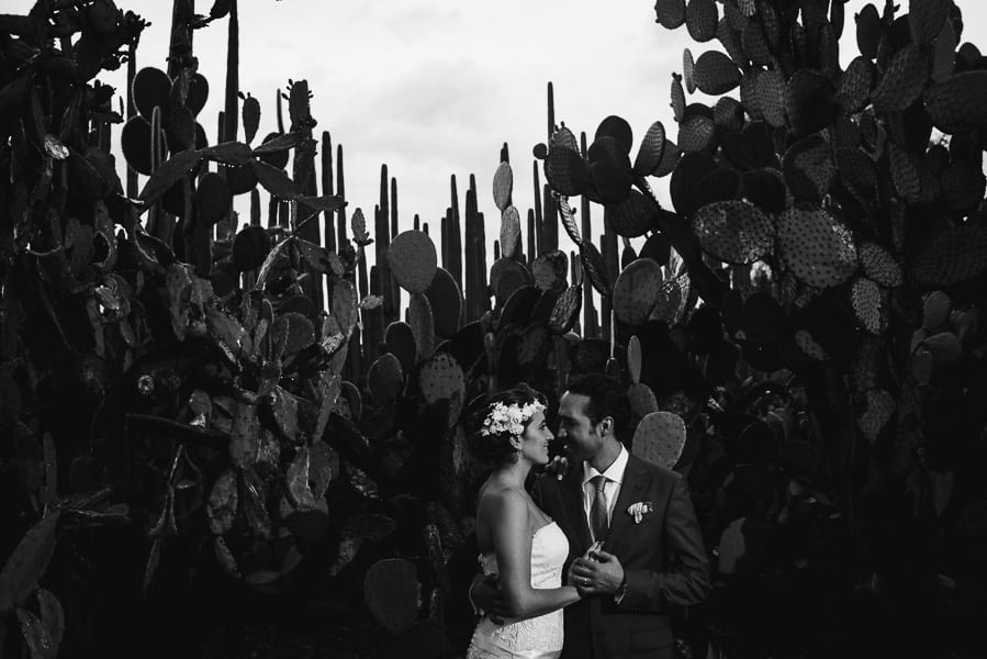 oaxaca-wedding-photographer-santo-domingo-etnobotanichal-garden-184